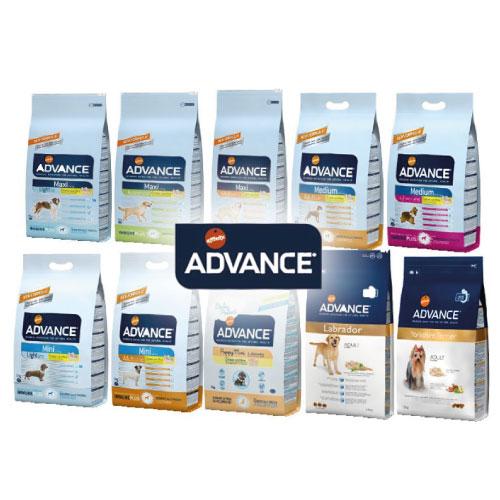 advance_pinso_sec