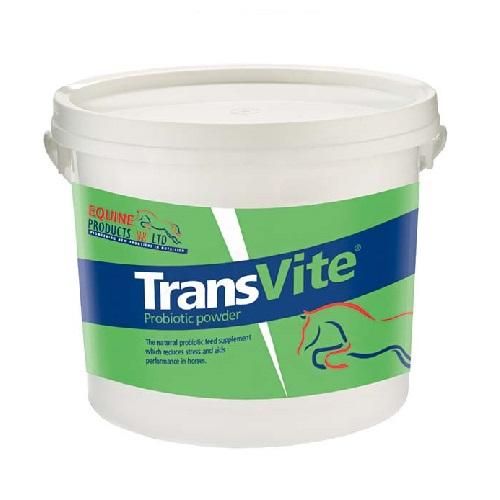 transvite